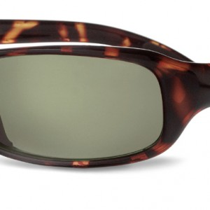 10348 FANG Dark Tortoise polarized Axis_newlogo